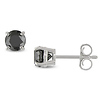 1ct TDW 14K White Gold Round Black Diamond Stud Earrings